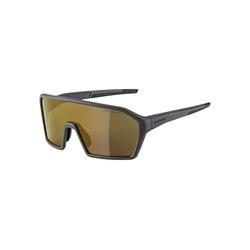 Alpina Sportbrille RAM HM+ grau