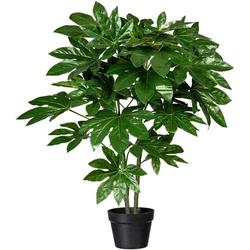 Künstliche Zimmerpflanze Fatsia japonica Fatsia japonica, Creativ green, Höhe 90 cm