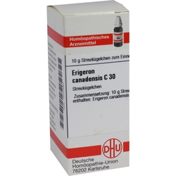 ERIGERON CANADENS C30