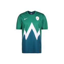 Nike Fußballtrikot Slowenien Away Stadium Em 2021 L