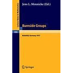 Burnside Groups - Buch