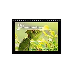 Das Jemenchamäleon (Tischkalender 2021 DIN A5 quer) - Kalender