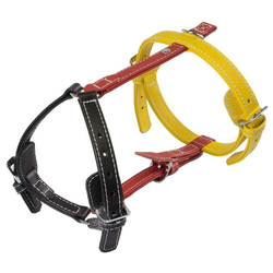 Das Lederband Geschirr Frankfurt Black/Indian-Red/Vibrant-Yellow