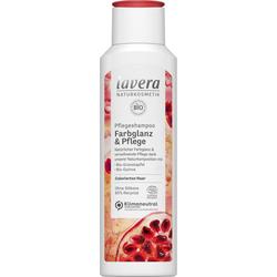 Farbglanz & Pflege Shampoo 250 ml