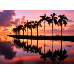 Fototapete Beauty and the Beach, glatt 3 m x 2,23 m