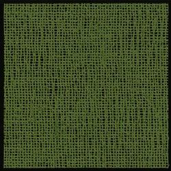 Wehncke Friedola Aerotex Vorzelt Teppich grün Länge 300 cm Breite 250 cm grün