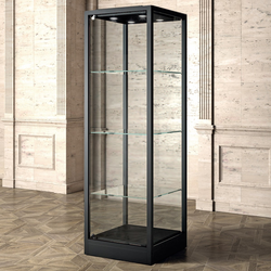 Museum Glasvitrine Metall schwarz 60 x 200 x 60 cm