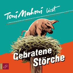 Gebratene Störche als Hörbuch Download von Toni Mahoni