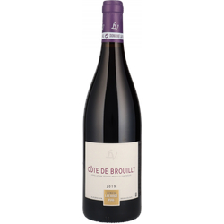 2019 Cote de Brouilly Lafarge Vial - Rotwein