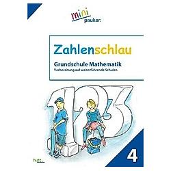 Zahlenschlau - Buch