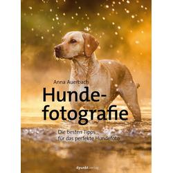 Hundefotografie: Taschenbuch von Anna Auerbach
