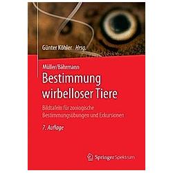 Bestimmung wirbelloser Tiere - Buch