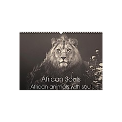 African Souls African animals with soul (Wall Calendar 2021 DIN A3 Landscape)