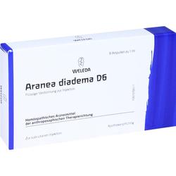 Aranea Diadema D 6 Ampullen