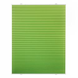 Plissee Haftfix, ohne Bohren Rollos grün Gr. 65 x 130