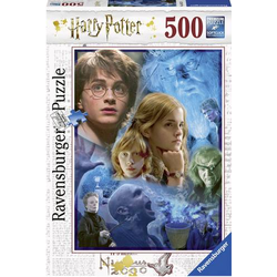 Harry Potter in Hogwarts Puzzle
