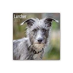 Lurchers - Lurcher 2021