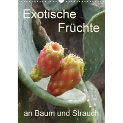 Exotische Früchte an Baum und Strauch (Wandkalender 2021 DIN A3 hoch)
