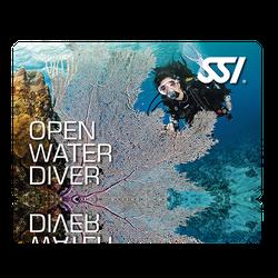 Open Water Diver (OWD) - Language Kurs