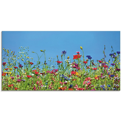 Artland Glasbild Blumenwiese II, Blumenwiese (1 Stück) 60 cm x 30 cm