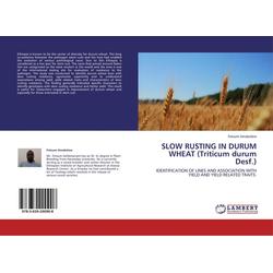 SLOW RUSTING IN DURUM WHEAT (Triticum durum Desf.) als Buch von Fetsum Amakelew
