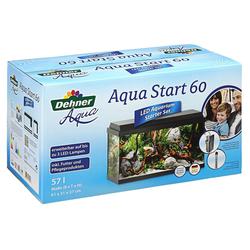 Dehner Aquarien-Set 60mit Futter/Pflegeprodukten, 61 x 37 x 31 cm schwarz