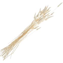 Kunstpflanze Lagurus, VBS, 60 cm