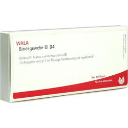 Bindegewebe GL D 4 Ampullen