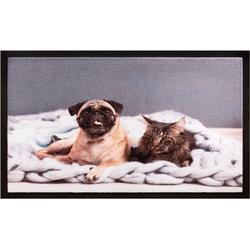 Fußmatte Fußmatte Decor & Rand Katze & Hund Mops 40x60 cm, matches21 HOME & HOBBY, rechteckig, Höhe 5 mm