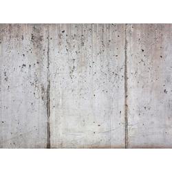 living walls Fototapete Beton, glatt, (1 St), 350 x 255 cm