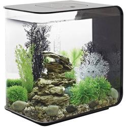 Oase 72033 Aquarium 30l mit LED-Beleuchtung