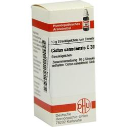CISTUS CANADENSIS C 30 Globuli 10 g