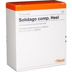 Solidago comp. Heel