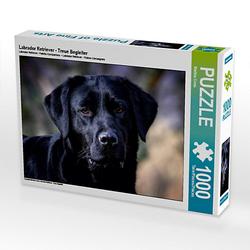 Labrador Retriever - Treue Begleiter Lege-Größe 64 x 48 cm Foto-Puzzle Bild von Martina Cross Puzzle