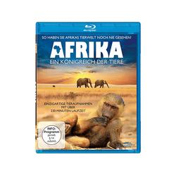 Afrika - Ein Königreich der Tiere Blu-ray