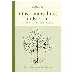 Obstbaumschnitt in Bildern. Hans W. Riess  - Buch