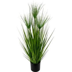 Kunstpflanze Zyperngras im Topf Zyperngras, I.GE.A., Höhe 75 cm