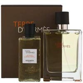Hermès Terre d'Hermes Eau de Toilette 100 ml + Shower Gel 80 ml Geschenkset