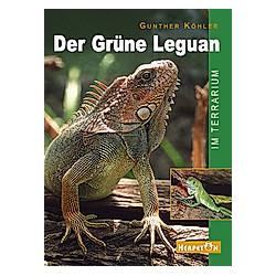 Der Grüne Leguan im Terrarium. Gunther Köhler  - Buch