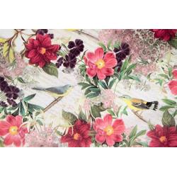 STAR Geschenkpapier, Geschenkpapier Noten, Blumen und Vögel 70cm x 2m, Rolle