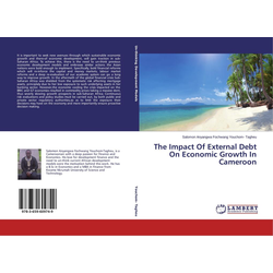 The Impact Of External Debt On Economic Growth In Cameroon als Buch von Salomon Anyangwa Fochwang Youchom- Tagheu