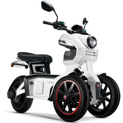 Doohan eGo2 Dreirad Elektroroller 1560W - 45km/h, weiß