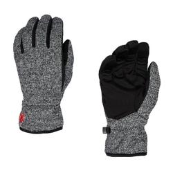 Spyder Skihandschuhe SPYDER BANDIT Hand-Schuhe wärmende Herren Ski-Handschuhe Finger-Handschuhe Grau L