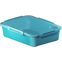 Rotho MEMORY Mikrowellen-Dose, Mikrowellen-Behälter zum Aufwärmen, Transportieren oder Frischhalten, Füllmenge; 3100 ml, 290 x 220 x 77 mm, AQUA blau