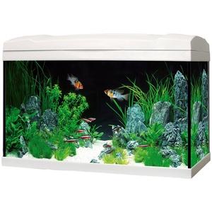 Marina Aquarien-Set Complete 54 LED, 54 Liter, BxTxH: 61x32x37,5 cm weiß