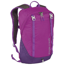 Eagle Creek Travel Packs Day Travelers Rucksack RFID 44 cm - grape