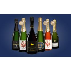 Cava-Genießer-Paket 4.5L Weinpaket aus Spanien