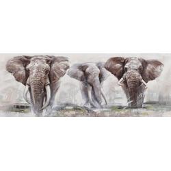 Ölbild Elephant, Elefanten