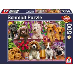 Hunde im Regal Puzzle 500 Teile