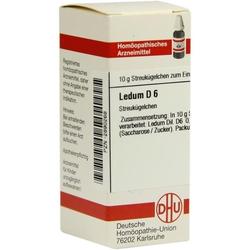 LEDUM D 6